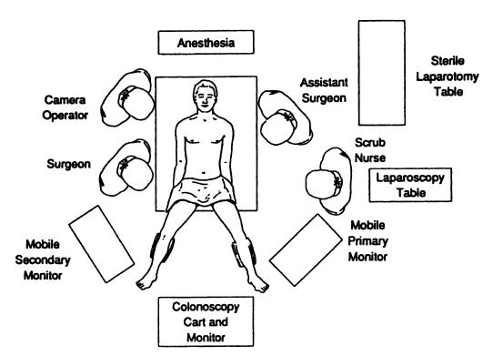 lower rectum diagram